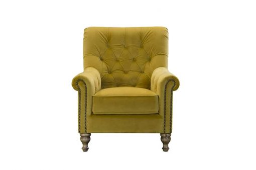 sofia chair in plush turmeric fabric
